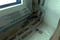 klimaschutzsiedlung nrw senden ascheberg steinhagen 3 liter h user kfw 40 h user. Black Bedroom Furniture Sets. Home Design Ideas